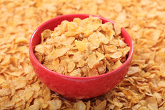 Bowl with corn flakes on corn flakes background. Red bowl with corn flakes on corn flakes background Stock Images