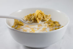 Bowl of corn flakes Stock Photography