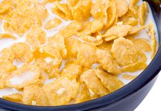 Bowl of Cornflakes with Milk Royalty Free Stock Photography
