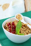 Bowl of cornflakes with milk and  berries Stock Images