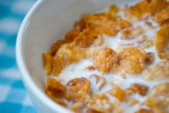 Bowl of cornflakes and milk Royalty Free Stock Image