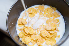 Bowl with Cornflakes and Milk. Healthy Breakfast. Royalty Free Stock Image