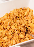 Bowl of cornflakes. Royalty Free Stock Photography