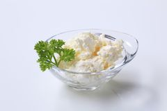 Bowl of cottage cheese Royalty Free Stock Image
