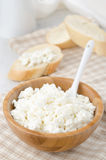 Bowl of cottage cheese Stock Image