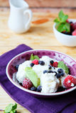 Bowl of cottage cheese with berries Royalty Free Stock Images