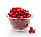 Bowl of cowberries. On a white background Royalty Free Stock Images