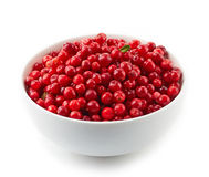 Bowl of cowberries. On a white background Stock Photos