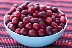 Bowl of Cranberries Stock Photo