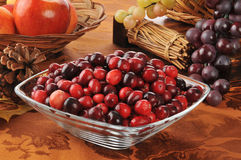 Bowl of cranberries Royalty Free Stock Image