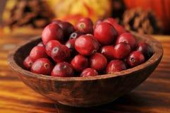 Bowl of cranberries Stock Photos