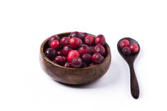 Bowl of cranberries Stock Image