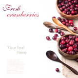Bowl of cranberries Stock Photography