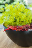 Bowl of crayfish and dill Stock Photography