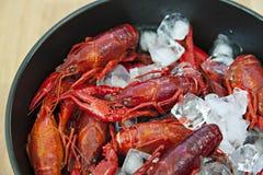 Bowl of crayfish Royalty Free Stock Photos