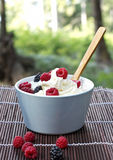 Bowl with cream and berries Stock Image