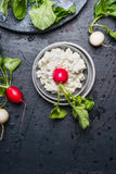 Bowl with cream cheese and fresh radish with green leaves on dark background. Top view Stock Images