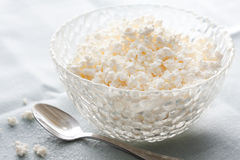 Bowl of creamy cottage cheese Stock Image