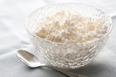 Bowl of creamy cottage cheese Stock Photos