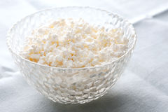 Bowl of creamy cottage cheese Royalty Free Stock Image