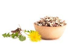 Bowl of Dandelion Root an Alternative Medicine. A Bowl of Dandelion Root an Alternative Medicine royalty free stock photos