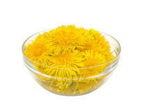 Bowl with dandelions. Bowl full of dandelions on a white background Stock Photography