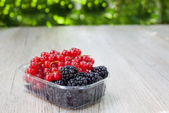 Bowl with different berries - red currant and blackberry Royalty Free Stock Photo