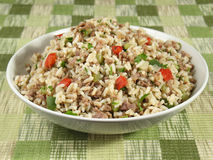 Bowl of Dirty Rice. Dirty rice is a delicious traditional Cajun rice dish which is made dirty from the brown color of chicken liver and gizzards. It is prepared Royalty Free Stock Photos