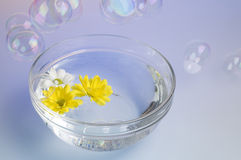 Bowl with dissolved sea salt and flowers. Royalty Free Stock Images