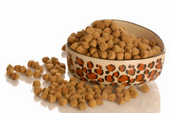 Bowl of dog or cat food Stock Photo