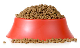 Bowl of dog food Stock Images