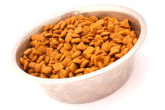 Bowl dog food Royalty Free Stock Photo