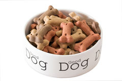 Bowl of dog food Stock Photography