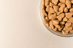 Bowl with dog food on a light background . Close up stock photos