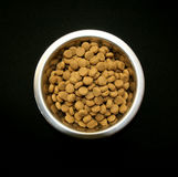 A bowl of dog food Stock Image