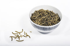 Bowl of dried mealworms. A bowl of dried mealworms Royalty Free Stock Images