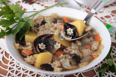 Bowl of dried mushroom soup with pasta and potatoes Royalty Free Stock Images