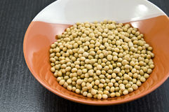 Bowl of dried soya beans. Stock Photos