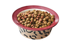 Bowl of dry dog food Stock Photography