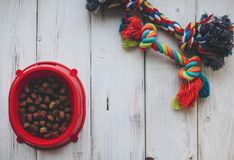 A bowl of dog food stock photo