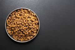 Dry Food For Pets. Bowl with dry food for domestic animals on black ceramic floor royalty free stock image