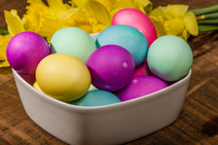 Bowl of dyed Easter eggs with daffodils Royalty Free Stock Photos