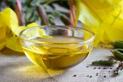 A bowl of evening primrose oil with blooming evening primrose pl Stock Images