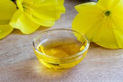A bowl of evening primrose oil with blooming evening primrose Royalty Free Stock Photos