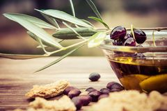 Bowl with extra virgin olive oil, olives, a fresh branch of olive tree and cretan rusk dakos close up. Royalty Free Stock Photos