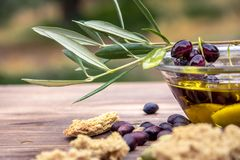 Bowl with extra virgin olive oil, olives, a fresh branch of olive tree and cretan rusk dakos close up. Stock Photo