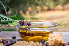 Bowl with extra virgin olive oil, olives, a fresh branch of olive tree and cretan rusk dakos close up. Stock Photos