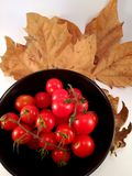 A bowl of eye-catching red tomatoes stock photography