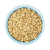 Bowl of Fennel Seeds on White Royalty Free Stock Photography