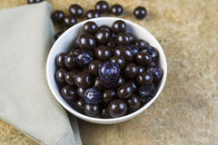 Bowl filled with Blueberries and Chocolate Balls Royalty Free Stock Photos